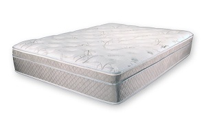What Is The Best Mattress For Lower Back Pain Back Pain